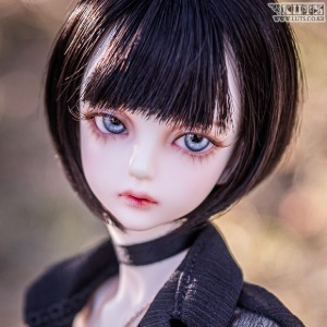 Model Delf ANN Head Limited