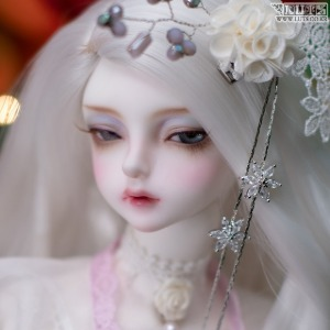 Model Delf ANN Romance ver. Head Limited