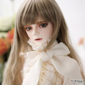 Senior65 Delf DIEZ ver.Dolce Head Limited